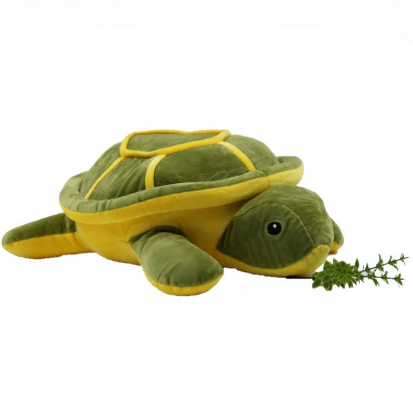 Cute Yoka Turtle